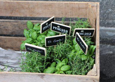 Kundenprojekte - Micasa